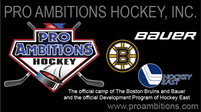Pro Ambitions Hockey Camps